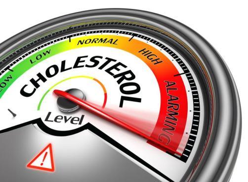 colesterol3