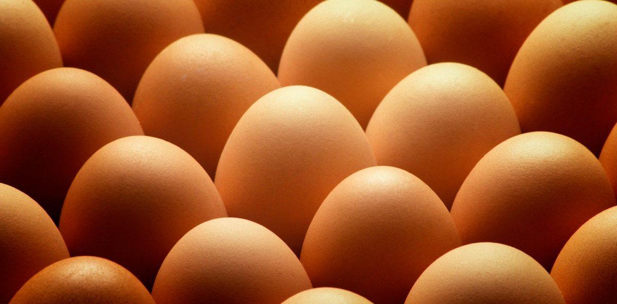 ¿Puedo comer huevos? ¿Cuántos porsemana?