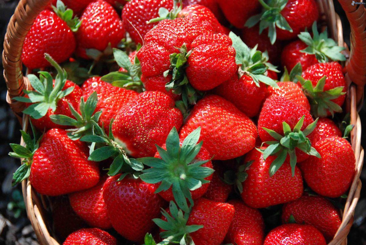 Las frutillas, ¿Cuántas caloríastienen?