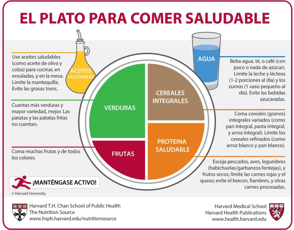 Mi Plato-Harvard