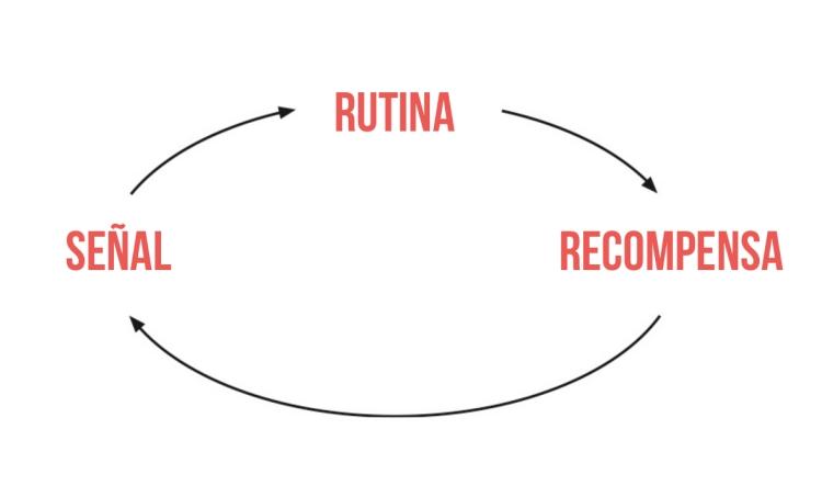 ciclo-habitos