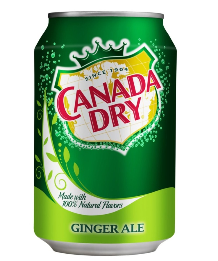 eng_pl_Schweppes-Canada-Dry-CD-Ginger-Ale-CAN-330-ml-18382_1