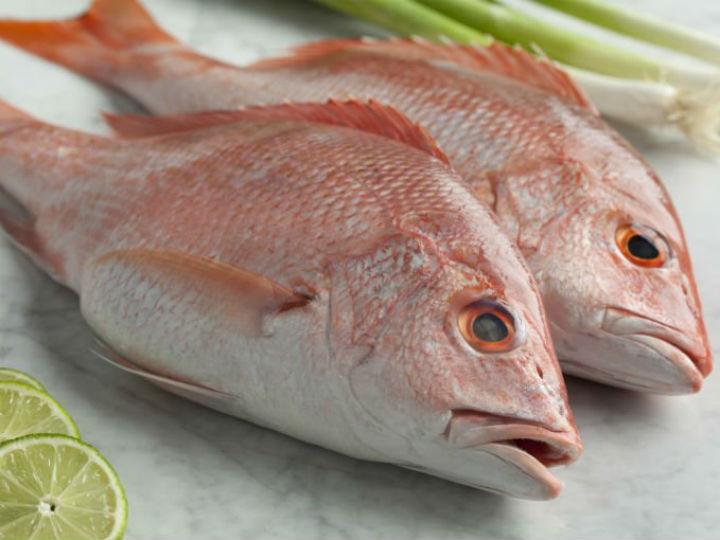pescado-fresco-1